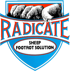Radicate Sheep Footrot Solution